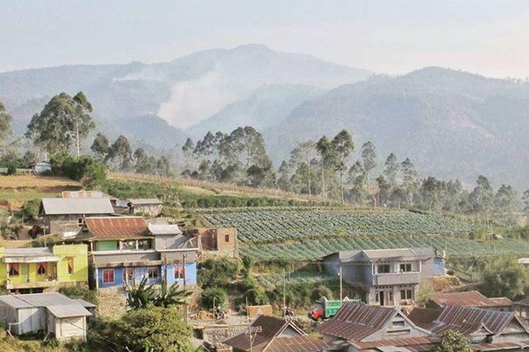 Mari bersama Meredakan asap, bukan melawannya ! Salah satu titk api di gunung bawakaraeng yang terlihat puluhan kilometer dari sini. Lokasi : Tombolo Pao, kabupaten Gowa . Sulawesi Selatan. @instanusantara Instanusantara InubMelawanAsap Roadto4IN Instanusantaramakassar Jelajahsulsel Visitsouthsulawesi INDONESIA Instagram Instagowa Instapinrang Instamakassar Gofujifilm Fujifilm Terfujilah X30 Landscape