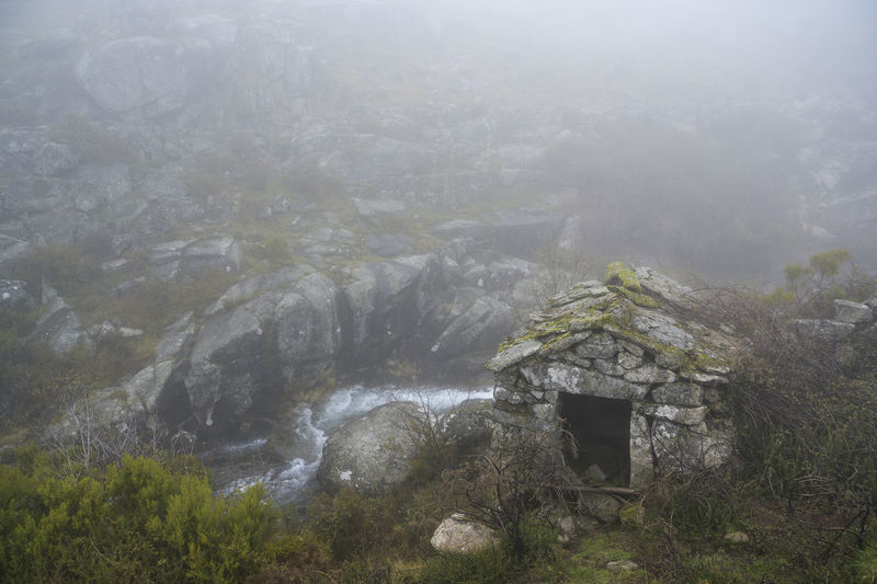 Scenic view of foggy weather on mountain