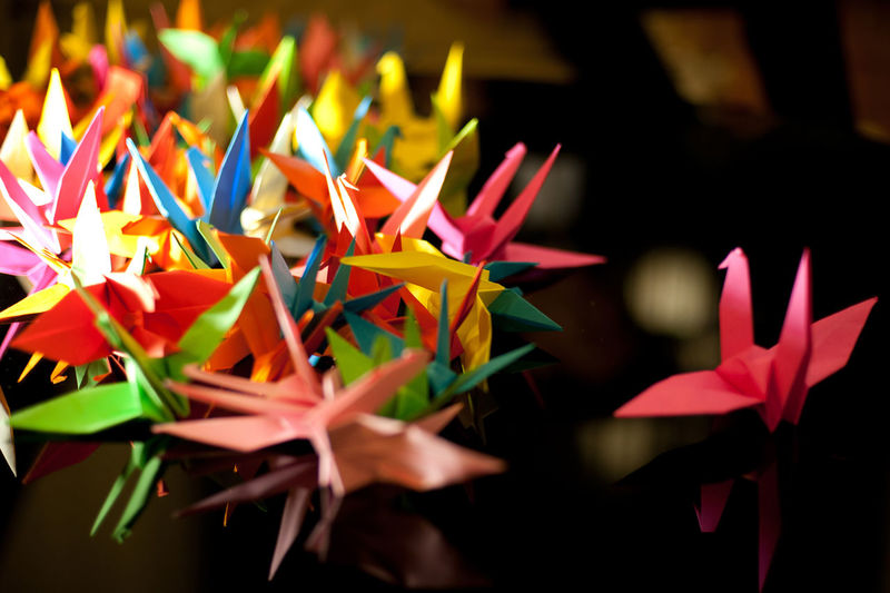 Colourful paper crane origami Close-up Art And Craft No People Creativity Multi Colored Craft Indoors  Flower Plant Flowering Plant Beauty In Nature Focus On Foreground Selective Focus Freshness Nature Paper Petal Origami Decoration Day Flower Head Colorful
