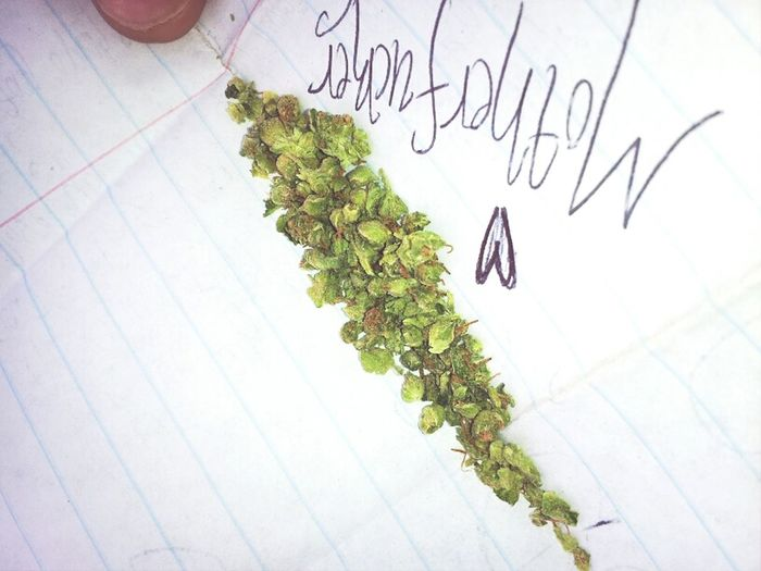 #WestCoastBud #StupidLoud #Exotic #WatchaSmokinghuh???
