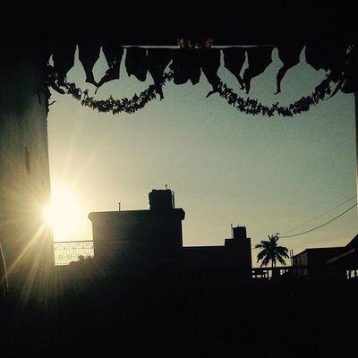 Rays Morning Sunrays Door Home IPhone Instairis VSCO Namma_karnataka Namma_bengaluru Instaiphone India