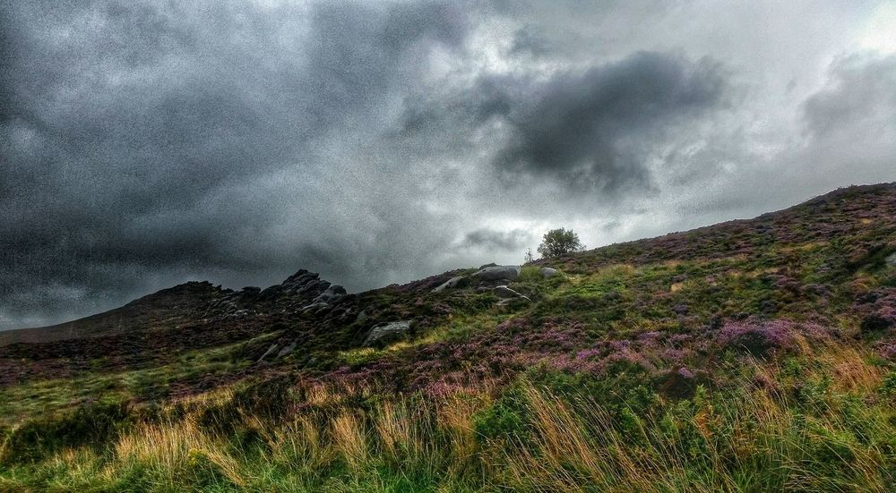 Landscape_photography Landscape_Collection Cloudy Moorland Wilderness Landscape Eyem Gallery Eye For Photography MyWorldInPictures Natural Light Observing Nature Eyemphotography Transience Eyemcaptured Eye4photography