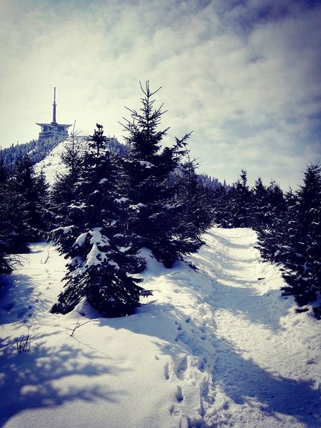Winter Beskydy Czech Republic Lysahora Mountains Snow ❄ Trekking Beautiful Snow Top Of The Mountains