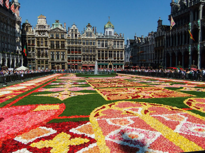 Brussels Flower Carpet Architecture Architecture_collection Belgium Brussel Brussels Bruxelles Building Building Exterior Capital Cities  City Flower Carpet Flower Collection Flowers Travel Travel Photography Grote Markt Grand Place