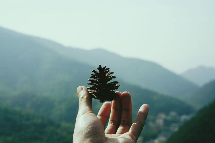 莫干山 Human Hand