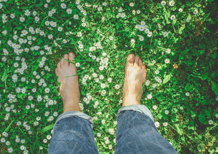 EyeEm Gallery EyeEm Nature Lover Feets Feetselfie Garden Photography Grass Grassy Green Green Color Green Field Human Foot Jeans Meadow Nature Outdoors Personal Perspective Standing Sunshine Summer Views