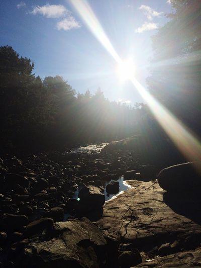 Riverbed Sun Light Sunshine Northern Ontario POV Of Dee Nature Sunburst
