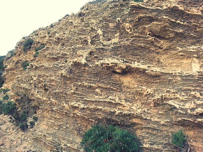 Sea Side Rocks