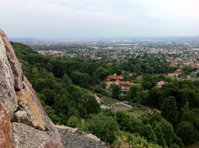 Weinberg Vineyard Enjoying The View Tal Valley