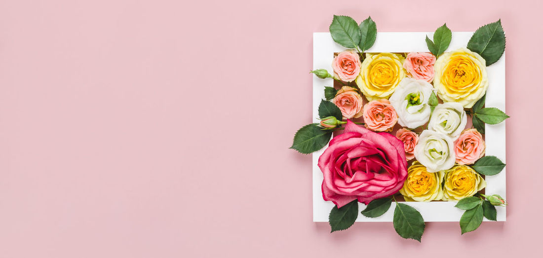 Close-up of rose bouquet against pink background