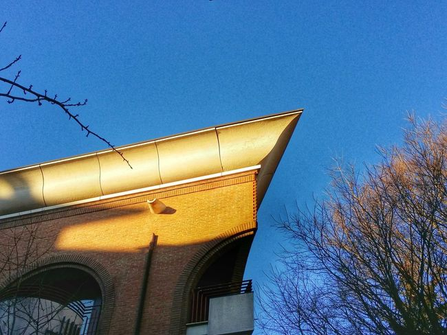 Showcase March Challenge Cutting Edge Advanced Building Tops Udine Italy Early Morning Walks Yellow And Orange Sun Rays Travel Photography Travel Traveling Mobile Photography Art Fineart Architecture Mobile Editing