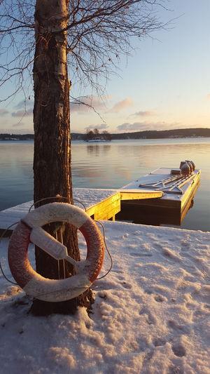 Wintertime....bu