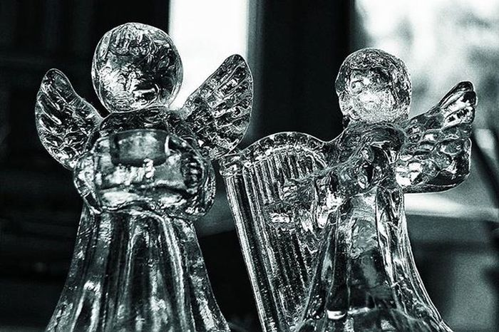 Angels Love Noir Photography Glass Macro Followme Tall Awesome Spirit Free Clickfor500gains Clickfor5kfollows Hitfor100fans Hitfor100follows Instafamous Instafamous Photooftheweek