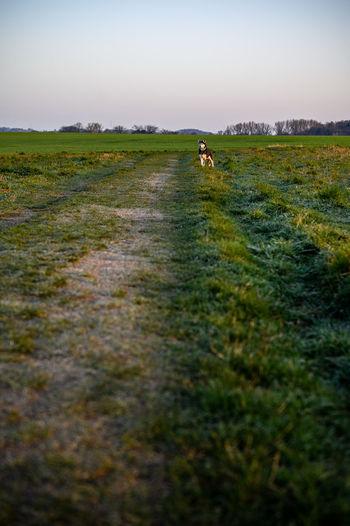 People in a field