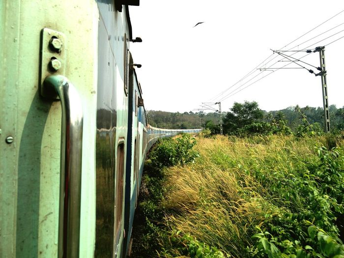 Traveling through Kerala in South India can make one believe that the world is a lot more Greener than the screens of Enviornmentalists. #Train #journey #kerala #southindia #railways #geass #greenery #travelphotography #coach #Curves #turning #bend #horizon #greenworld #sky #motionpic #OnTheMove #Afternoon