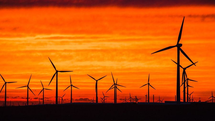 Silhouette of wind turbines on land during sunset