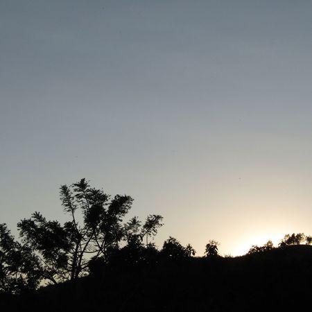 Silhouette Nature Beauty In Nature Sunset Paradise ❤ Paisajes De México