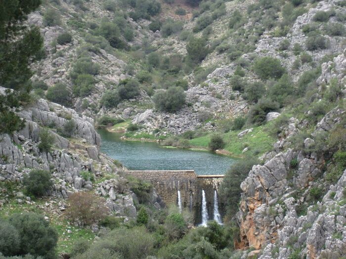 Sierra De Las Nieves Water Plant Tree Nature Scenics - Nature Mountain Beauty In Nature Day River Architecture No People Built Structure Tranquility Tranquil Scene Connection Forest Non-urban Scene Environment Bridge Outdoors