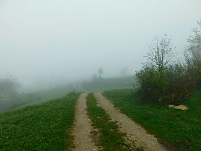 Just exploring the beautiful nature of Serbia 😍📷 Beautiful Foggy Weather Morning Serbia View Beauty In Nature Day Direction Environment Fog Foggy Morning Footpath Grass Hazy  Landscape Mothernature Nature No People Outdoors Plant Road Sky The Way Forward Viewpoint Village First Eyeem Photo