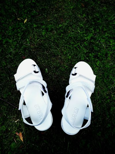 White Green White Shoes Shoes Nuovo Grass Park Planten Un Blomen Germany Hamburg Smartphone Photography