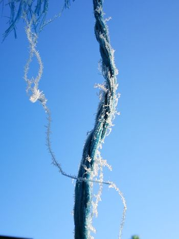 Nature Clear Sky Outdoors Close-up No People Frosty Day Winter Jewellery Strings Attached String