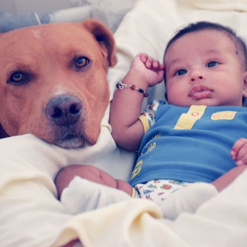My two Sons Neo