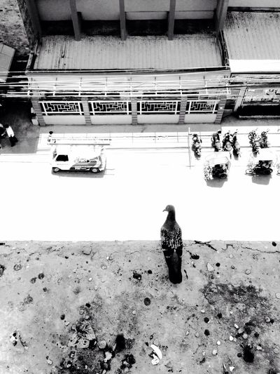 ALONE. Eyeem Philippines EyeEmCDO Faces Of EyeEm EyeEm Best Shots Blackandwhitephotography MJBRPhotography