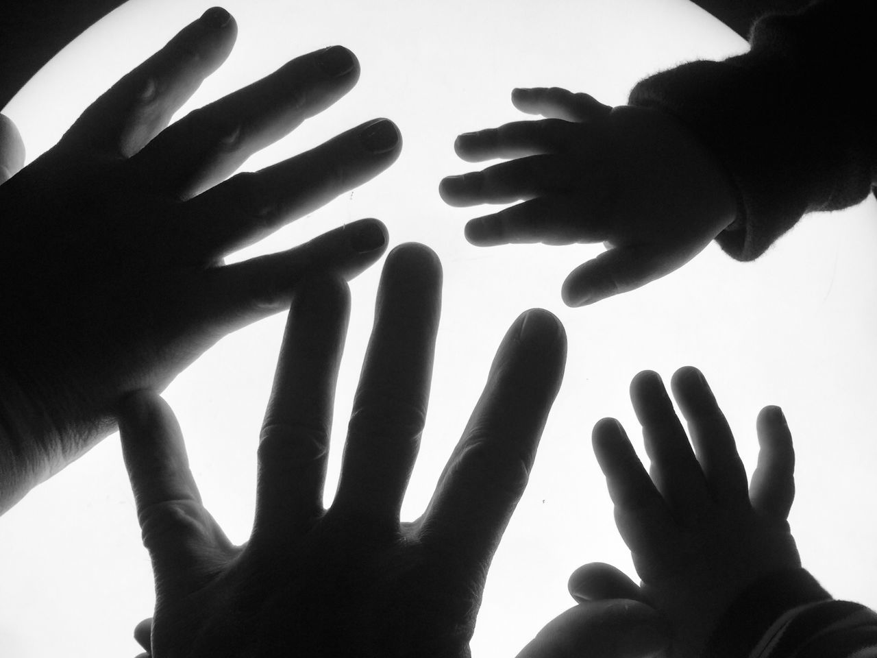 human hand, hand, human body part, finger, human finger, body part, real people, touching, unrecognizable person, people, indoors, close-up, shadow, togetherness, group of people, personal perspective, men, childhood, sunlight