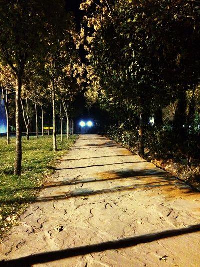 Tehran, Iran Tochal بام تهران Velenjak Nightphotography Light And Shadow Fall