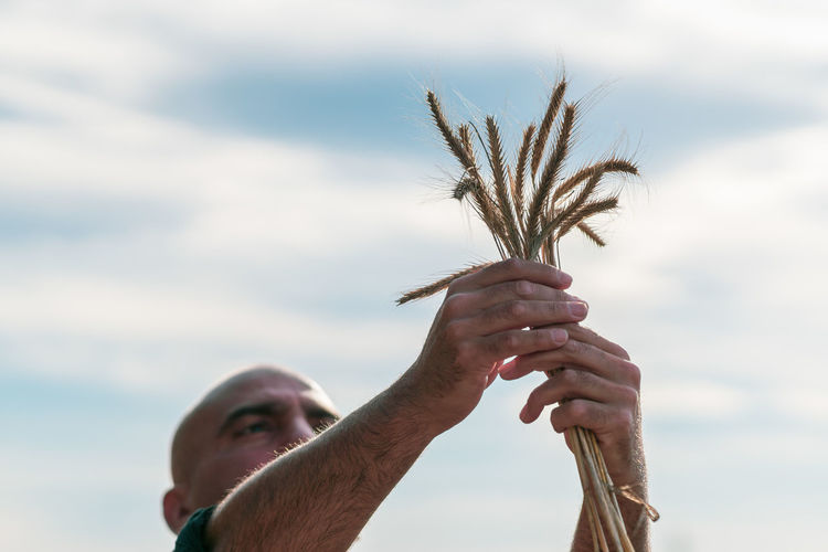 Close-up of man holding plant against sky
