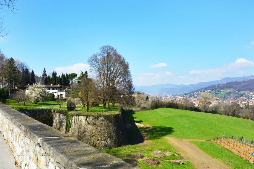 Beautiful Landscape Bergamo Bergamo <3 Bergamo Alta Bergamo Alta Citta Bergamo City Bergamo High City View Bergamo Italia Bergamo ıtalia Bergamo, Italia Bergamoalta Cameratree Castle Ruin Detail Church Flags In The Wind  Funicular Houses And Windows Italia Italy Italy❤️ Italy🇮🇹 Point Of View Pointofview Tower Viewpoint EyeEmNewHere