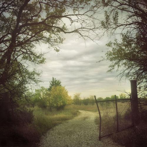 Early Autumn ,