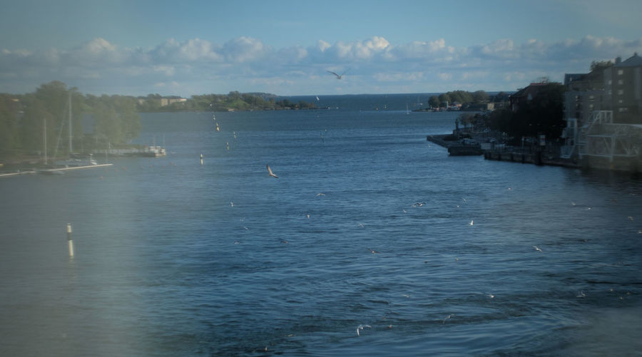 Flocking birds Reflection Sea Reflections Water Nature Flying Sky Birds View From Above Outdoors Island Ferry Through The Window Waterfront Swirls Flock Of Birds Beauty In Nature Shot From Above  Window Reflections No People Flying Birds Whirling Through Window Flocking Birds Gh5