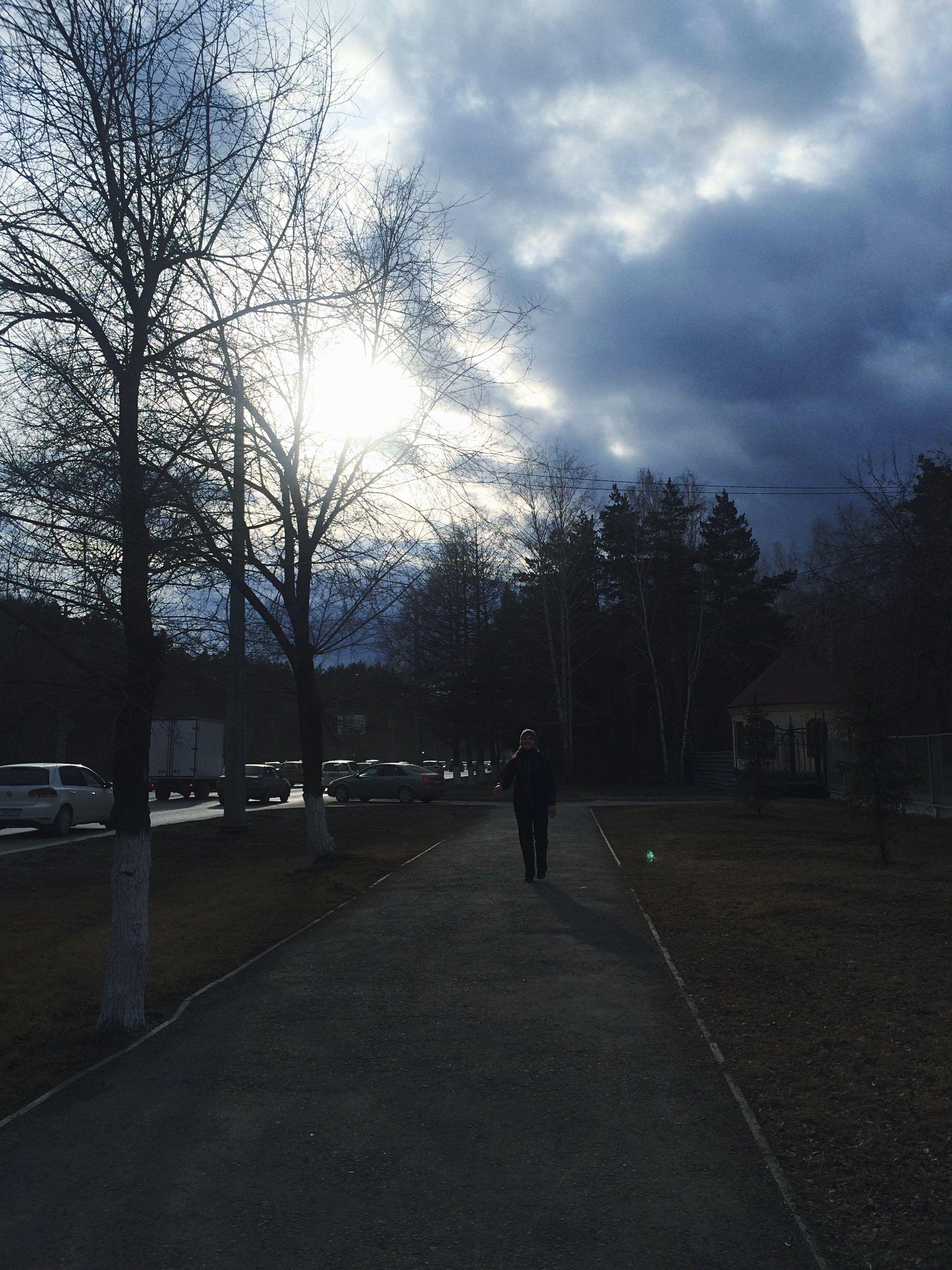 tree, transportation, sky, road, silhouette, the way forward, street, cloud - sky, bare tree, land vehicle, mode of transport, walking, men, sunset, full length, car, bicycle, cloud