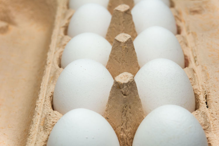 Eggs in a box Box Boxes Chicken Egg Chicken Eggs Clean Clean Eating Egg Eggs Farmer Fitness Food Harvest Harvesting Healthy Healthy Eating Healthy Food Healthy Lifestyle Hen's Egg Organic Organic Food Paper Box Protein Round White White Color