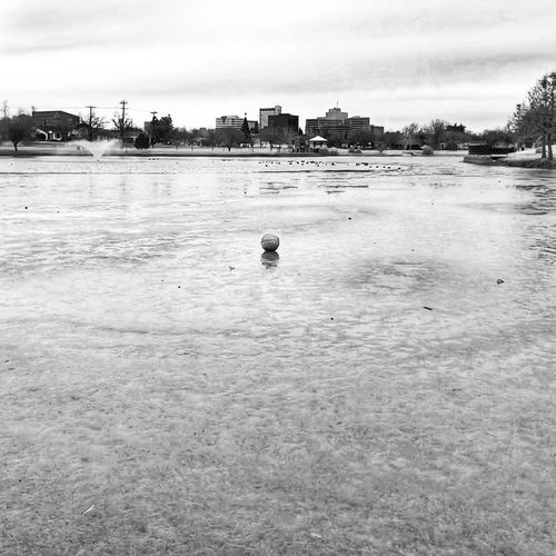 Thawing Duck Pond In The City Basketball Marooned Monochrome Pond Ice Water Day Architecture Outdoors Sky Built Structure Nature Building Exterior