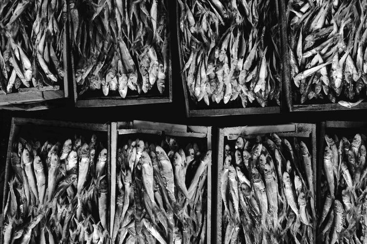 Close-up of dried fishes in boxes