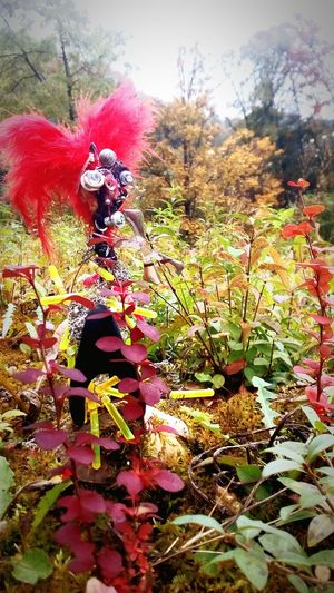 Alienporn Metalslug Drizzy Acting Up Non-urban Scene Flower Beauty In Nature Young Adult That's Me Creativity Formal Garden People Beauty In Nature Nature Autumn Growth Outdoors Vertical Tree