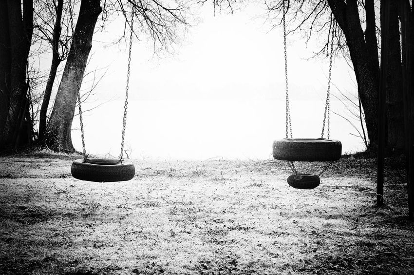 Two tire swings in monochrome harsh light Blackandwhite Branch Childhood Memories Day Empty Growth Hanging Harsh Light Harshlight Monochrome Nature No People Nostalgia Outdoors Rope Swing Sky Swing THREATS Tire Swing Tree Tree Trunk
