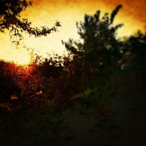 Sunrise_Sunsets_aroundtheworld Sunrise_sunsets_aroundworld Sunset_capture Sun sunspotters