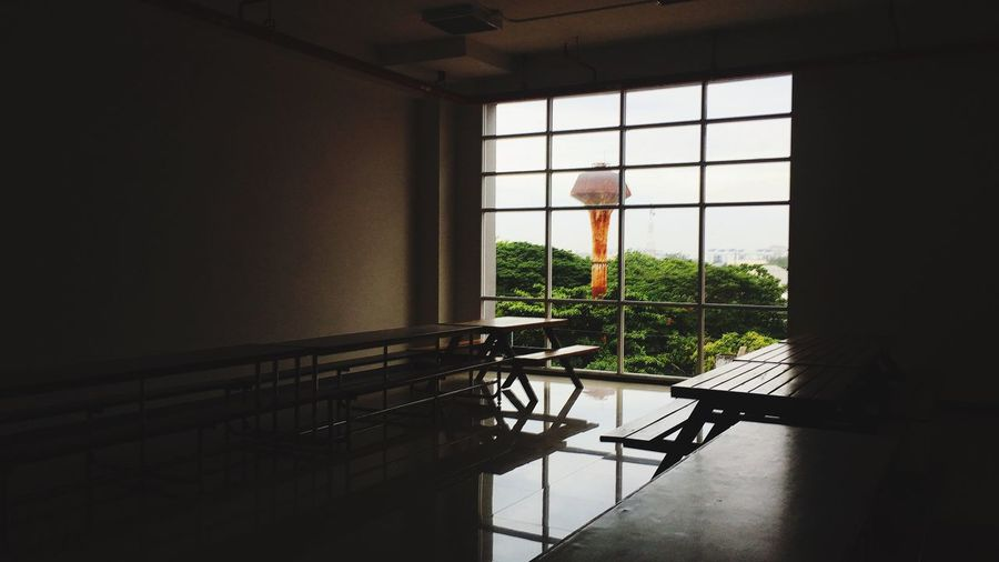 Stay alone EyeEm Selects Window Indoors  Plant Day No People Architecture Nature Tree