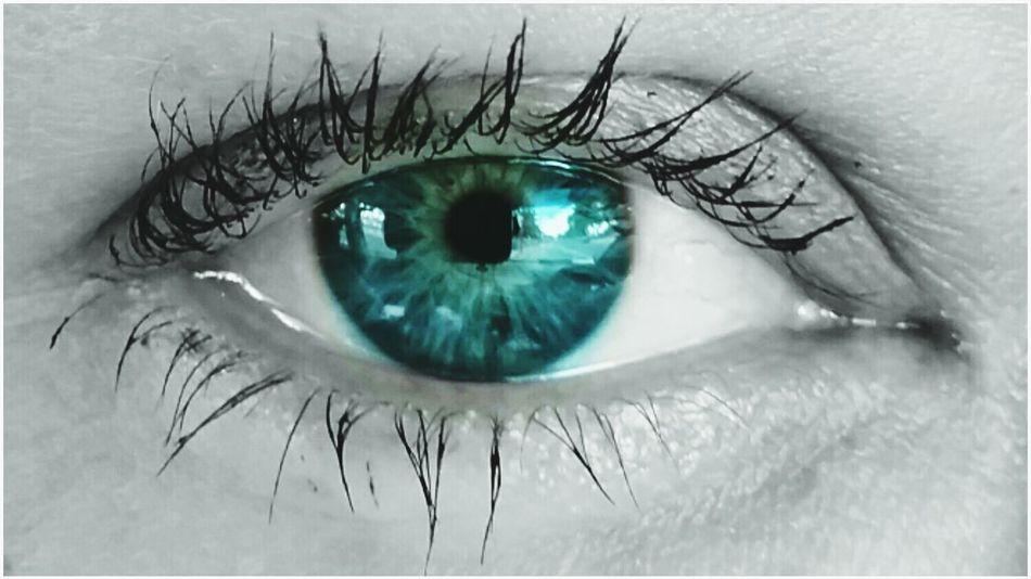 Pop of color! Eye eye lashes Eyeball One Person Close-up People Looking At Camera Iris - Eye Human Eye Human Body Part Eyesight