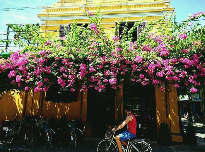 I just need a little sunshine. HoiAnancienttown Vietnam Colour Of Life