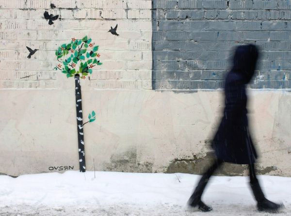 Streetphotography Long Exposure Flower Shadow City Architecture Street Art Brick Wall Blooming Creeper Wall - Building Feature Wall Graffiti Ivy