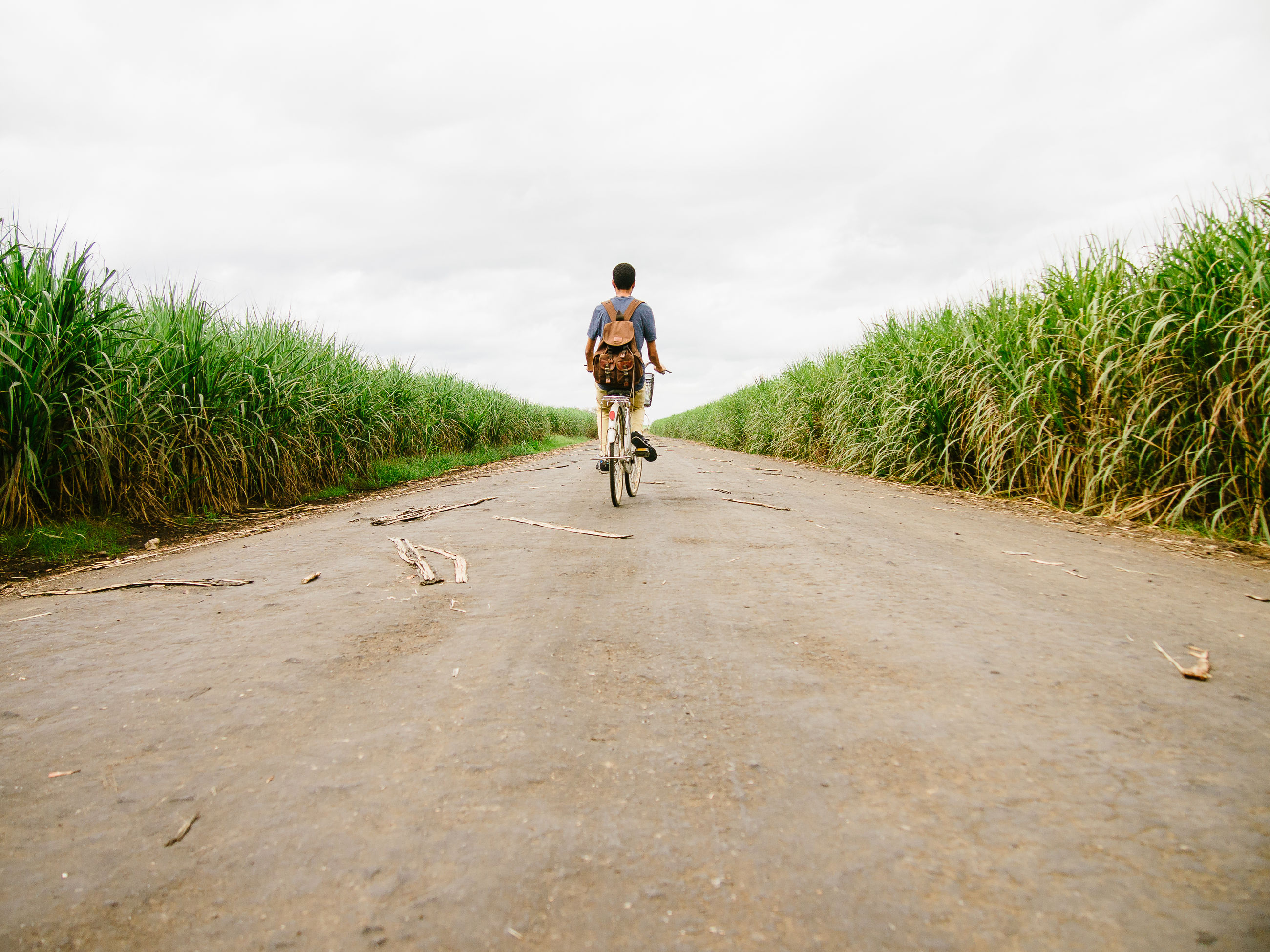 full length, lifestyles, leisure activity, the way forward, sky, casual clothing, walking, rear view, grass, men, dirt road, bicycle, riding, landscape, transportation, field, road, nature