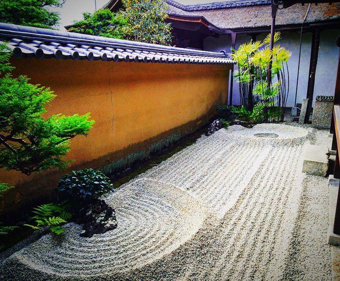 大徳寺 龍源院 京都 Kyoto 寺社仏閣 庭園