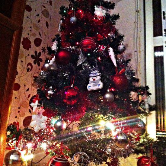 Christmas Navidad