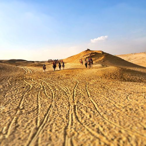 People and mammal on sand dune in desert against sky