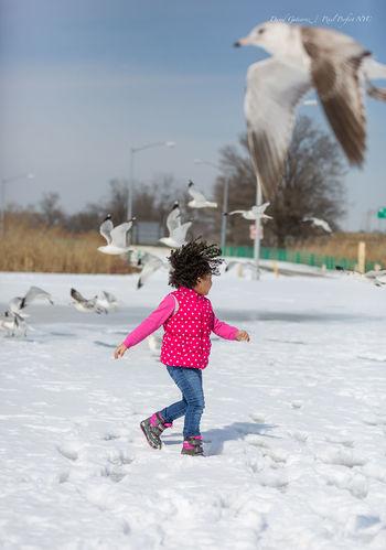 My Winter Favorites Capture The Moment David Gutierrez Pixelperfectnyc Mybestphoto2015 Beautiful Snow Winter EyeEm Best Shots Queens