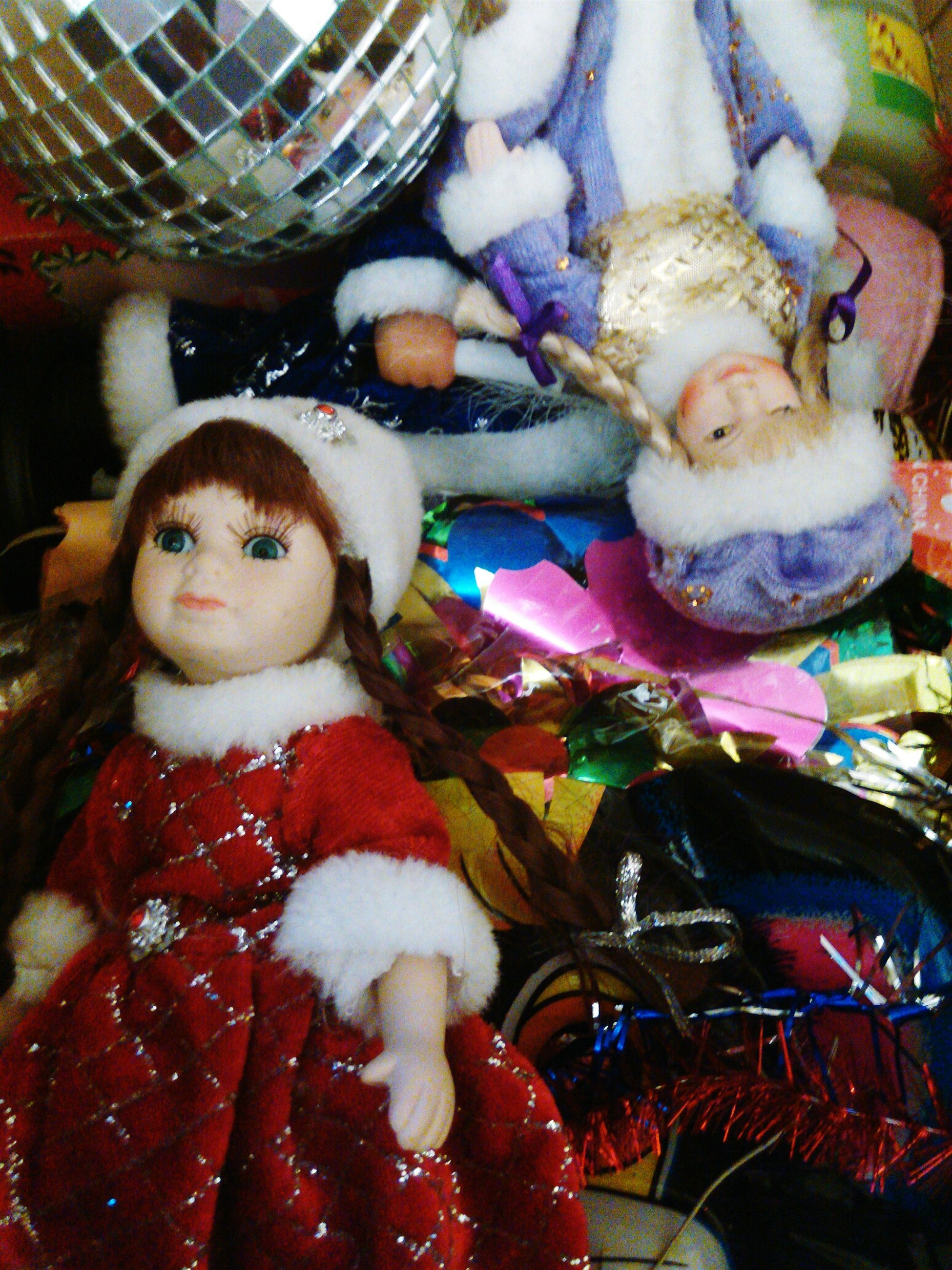 indoors, food, food and drink, christmas, animal representation, pets, animal themes, portrait, looking at camera, still life, domestic animals, high angle view, close-up, variation, retail, celebration, toy, stuffed toy, red, no people